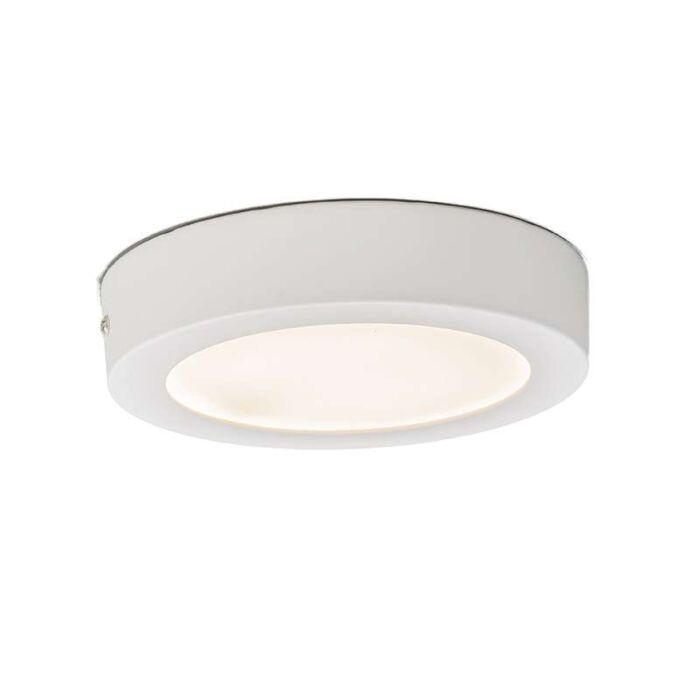 Deckenleuchte-Plate-12W-LED-rund-weiß