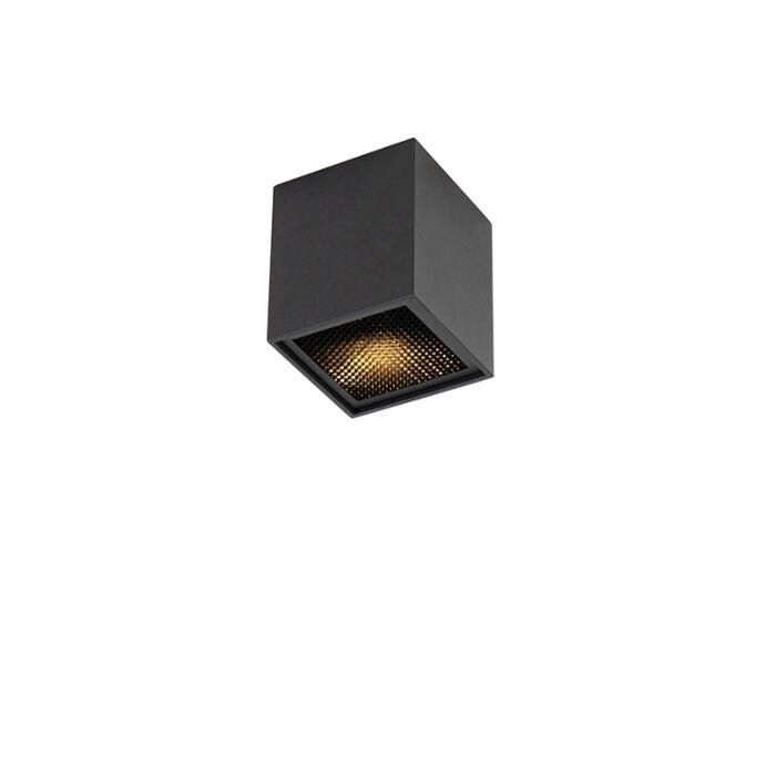 Design-Spot-schwarz---Qubo-Honey