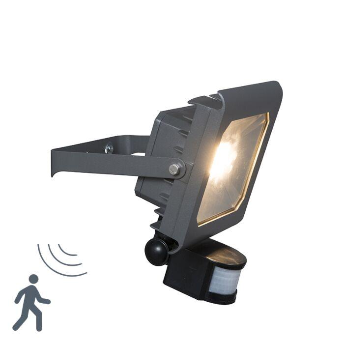 LED-Strahler-Radius-2-30W-PIR-dunkelgrau
