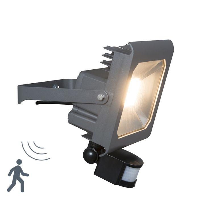 LED-Strahler-Radius-2-50W-PIR-dunkelgrau