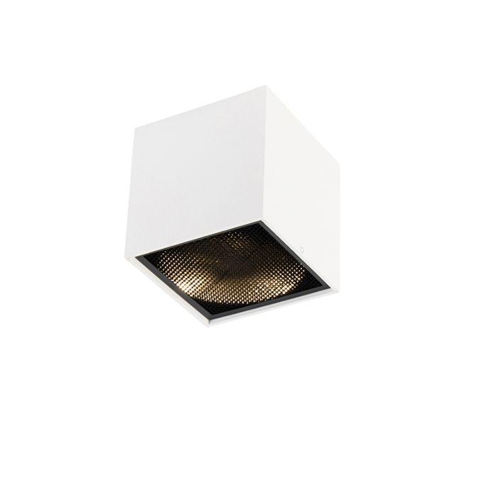 Design-Spot-weiß---Box-Honey